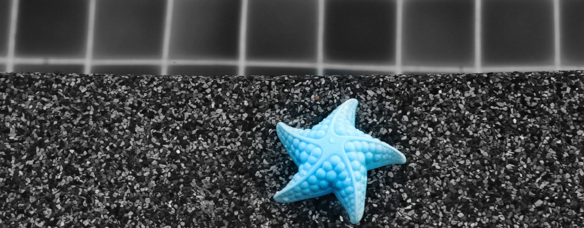 Child's toy starfish by the swimming pool edge.